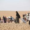 叙利亚拉卡城流离失所儿童和他们的家人。