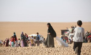 Displaced children and adults are seen after fleeing from ISIL-controlled areas in rural Raqqa, Syria, to Ain Issa, the main staging point for displaced families, some 50 Km north of Raqqa city.