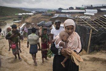 抵达联合国难民署营地的罗兴亚难民。