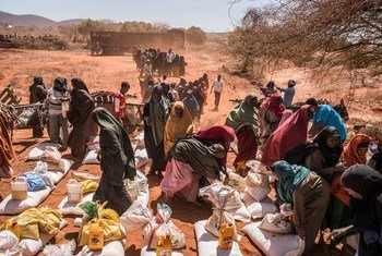 Katika mji wa Dinsoor, Somalia waathirika wa kiangazi wakipokea mgao wa chakula  kutoka kwa WFP. (Maktaba)