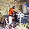 塞拉利昂一名工人。