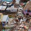 Destrucción causada por el huracán María en Dominica. Foto: IRIN/Ben PArker