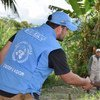 Observador de la Misión de la ONU en Colombia.