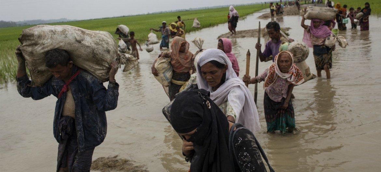 За месяц в Бангладеш прибыло 507 тысяч беженцев из Мьянмы Фото ЮНИСЕФ
