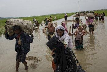 Llegada de refugiados Rohingya a Bazar Cox, Bangladesh. Foto: UNICEF/UN0119956/Brown