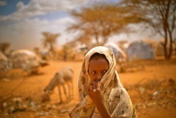 Deeqo Abdo watches as women build a stick shelter in the Ifo extension camp to Dadaab, in Kenya. Source: INTERNEWS/OCHA