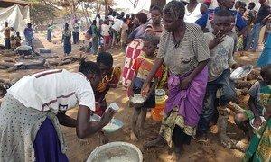 Au centre de transit de Nchelenge à Chiengi, dans le nord de la Zambie, des réfugiés congolais reçoivent des repas chauds fournis par les autorités locales et le HCR. Photo HCR/Pumla Rulashe