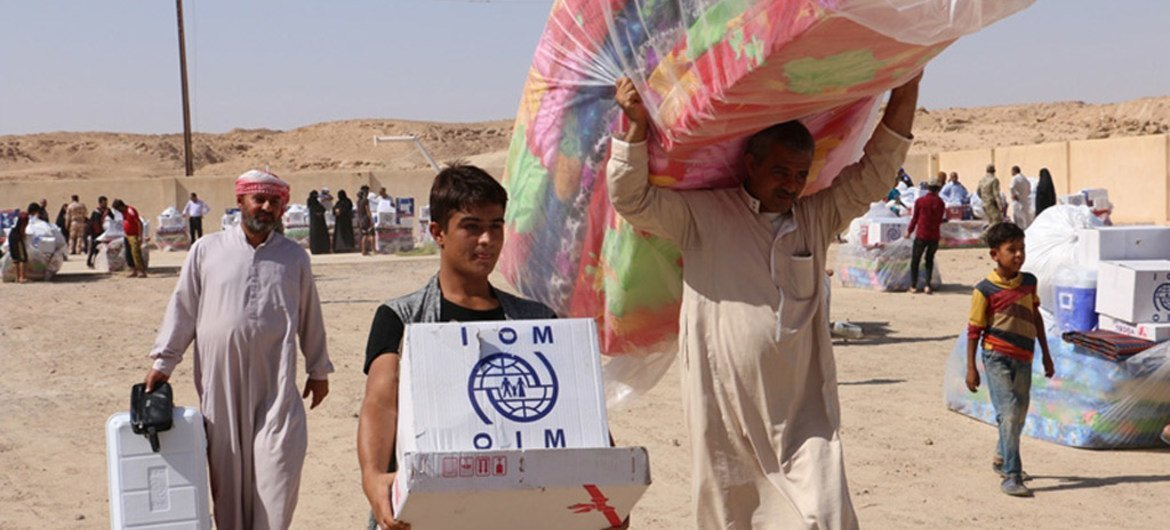 The International Organization for Migration (IOM) in close coordination with the Ministry of Migration and Displacement in Iraq is distributing non-food item kits to families in Al Habanyah displaced from west Anbar.