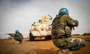 Des Casques bleus de la Mission de l'ONU au Mali (MINUSMA) lors d'une opération au sud-ouest de Gao. Photo MINUSMA/Harandane Dicko