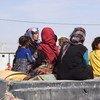 伊拉克北部由于战争而流离失所的妇女和儿童。