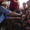 UNICEF supplies vaccines for a massive cholera vaccination campaign targeting all Rohingya refugees that have arrived in Bangladesh.