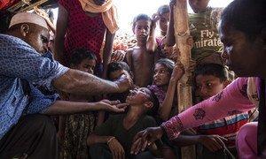 L'UNICEF fournit des vaccins contre le choléra pour les réfugiés rohingyas au Bangladesh. Photo UNICEF/Roger LeMoyne