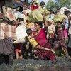 Les Rohingyas musulmans du Myanmar ont fui au Bangladesh après avoir été victimes de persécutions brutales qui, selon des enquêteurs  de l'ONU, pourraient constituer des crimes contre l'humanité.