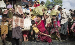 Rohingya Muslims from Myanmar flee to Bangladesh after facing brutal persecution that UN officials have said may amount to crimes against humanity.