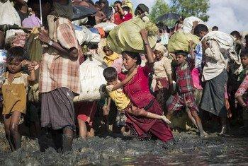 Waislamu wa kabila la Rohingya kutoka Myanmar wakiwa katika msafara kuelekea Bangladesh. Wanakimbia nyumbani kwa sababu ya ukatili dhidi yao ambao UN inasema unaweza kuwa uhalifu wa kivita.
