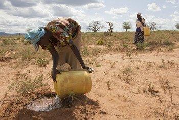 Mujeres recolectando agua en la árida Provincia Oriental de Kenya.
