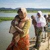约6800名罗兴亚难民在滞留缅甸边境四天后,抵达孟加拉国东南部考克斯巴扎尔省昂朱曼帕拉村附近的联合国难民署转运中心。