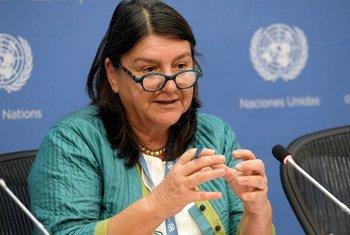 联合国食物权问题特别报告员埃尔弗。