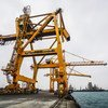 The port in the city of Hudaydah is a major lifeline for Yemen, bringing in food and humanitarian assistance. These cranes have been out of service since mid-2015, with little hope of repair anytime soon. (file)
