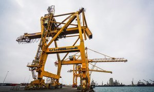 The Al Hudaydah port is a major lifeline for Yemen, bringing in food and humanitarian assistance. These cranes have been out of service since mid-2015, with little hope of repair anytime soon.