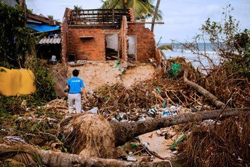 A UNICEF staff member walks through fallen trees and debris of a house destroyed by Typhoon Damrey in Phu Yen province, Viet Nam.