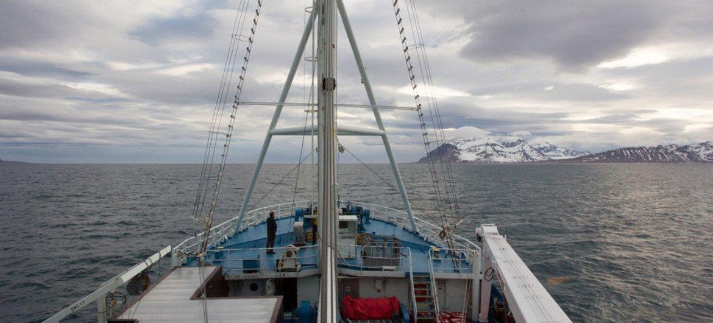 Изменение климата неизбежно сказывается на Арктике