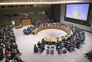 El coordinador especial de la ONU para el Proceso de Paz en Medio Oriente, Nickolay Mladeno, se dirige al Consejo de Seguridad a través de videoconferencia.