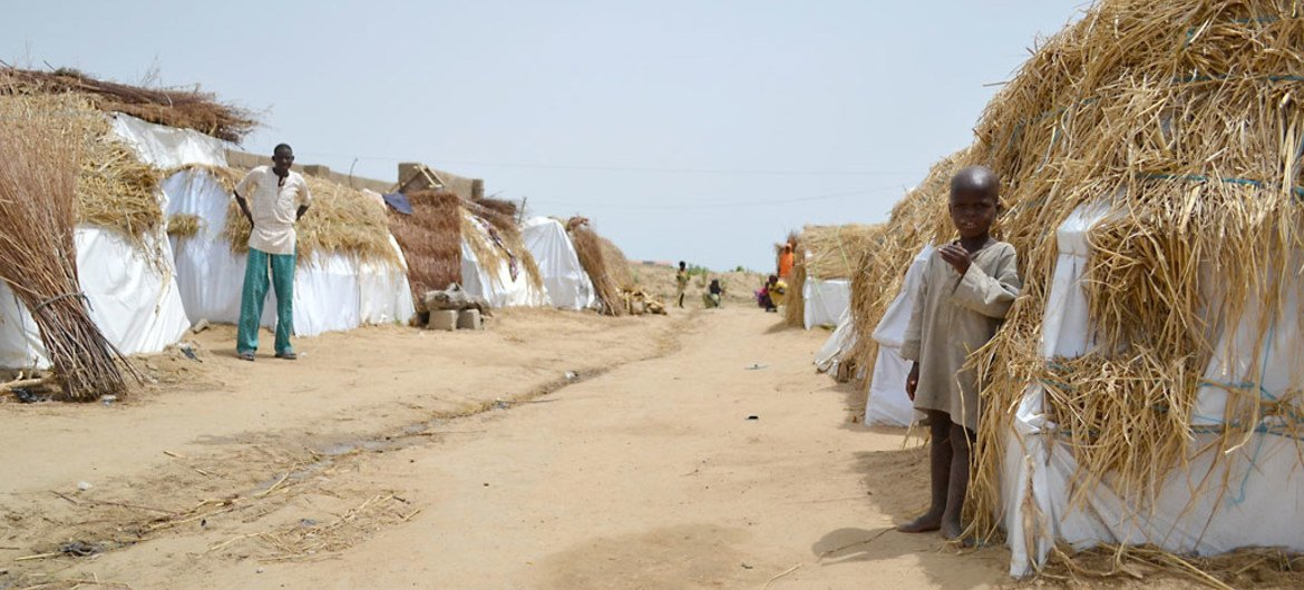An informal IDP camp in Dikwa (Borno state, Nigeria) where 191 households are settled. Their village, Kaza, has been occupied by Boko Haram for about two years.