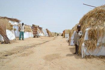 Un camp informel de personnes déplacés à Dikwa (Etat de Borno, Nigéria) où sont 191 familles. Leur village, Kaza, a été occupé par Boko Haram pendant environ deux ans.