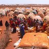 Residents of the Bulo Isak camp for the internally displaced persons wait to collect safe drinking water. Baidoa, Somalia.