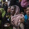 Rohingya refugees wait for a food distribution in Kutupalong camp, Cox's Bazar Bangladesh.