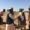 Une campagne de vaccination réactive contre la fièvre jaune dans l'Etat de Zamfara, dans le nord-ouest du Nigeria.