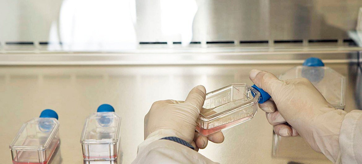"""Lab assistant growing culture viruses and bacteria in the """"Infectious Room"""" of the Cancer Institute of Columbia."""