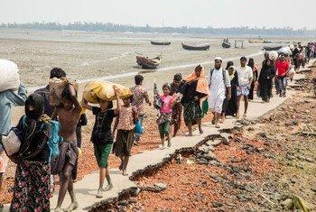 Более 680 тысяч беженцев из народности рохинджа бежали в Бангладеш