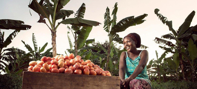 معدل النمو في أقل البلدان نموا بلغ 5% فقط في عام 2017. في الصورة: مزارعة تحصد الفاكهة في مزرعتها قرب بلدة كيوتورا، أوعندا.