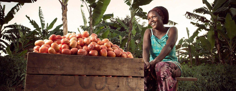 Dieta que forneça um mínimo de energia suficiente está fora do alcance de mais de 10% da população africana