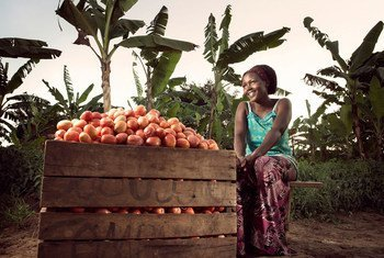 مزارعة تحصد الفاكهة في مزرعتها قرب بلدة كيوتورا، أوغندا.