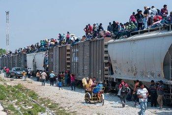 Irregular migrants atop freight train, 'La Bestia' which takes them through Mexico towards the US. (file)