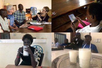 Collage of photos of patrons at the Kitengase Library in Uganda and customers and staff at FAO's milk bar in Rumbek, South Sudan.