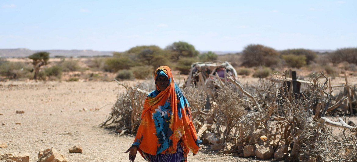 A woman walks in drought-hit Salaxley village, 15 kilometers south of Garowe in Puntland, one of the regions hit by a severe drought. UN Photo/Ilyas Ahmed