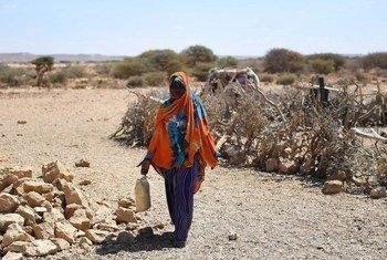 A seca na África Ocidental é uma das grandes consequências da mudança climática.