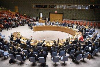联合国安理会一致通过了第2401号决议草案,要求叙利亚各方立即停止敌对行动