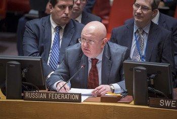 Постоянный представитель Российской Федерации Василий Небензя