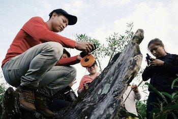 FAO soutient les efforts pour sauver les forêts du Paraguay.