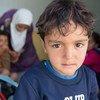Plus de 7.000 enfants migrants et réfugiés sont arrivés sur les îles grecques depuis le début de l'année, selon l'UNICEF.