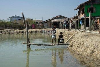 فتاتان صغيرتان تجلبان المياه من بركة في مخيم إنجيت تشاونغ في وسط ولاية راخين بميانمار. لا يمكن الوصول إلى مخيم إنجيت تشاونغ، الذي يضم حوالي 4 آلاف من مسلمي الروهينجا إلا بعد رحلة بالقارب تبلغ أربعا إلى خمس ساعات.