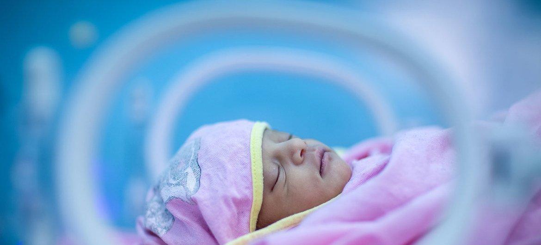 Bebé en una incubadora neonatal.