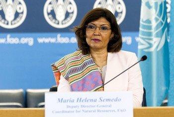 Maria Helena Semedo, directrice générale adjointe de l'Organisation des Nations Unies pour l'alimentation et l'agriculture