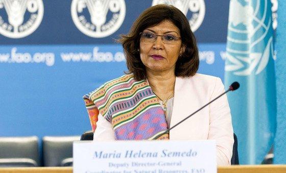 Diretora-geral adjunta da FAO, Maria Helena Semedo. Agência quer que autoridades envolvam os moradores das cidades no projeto