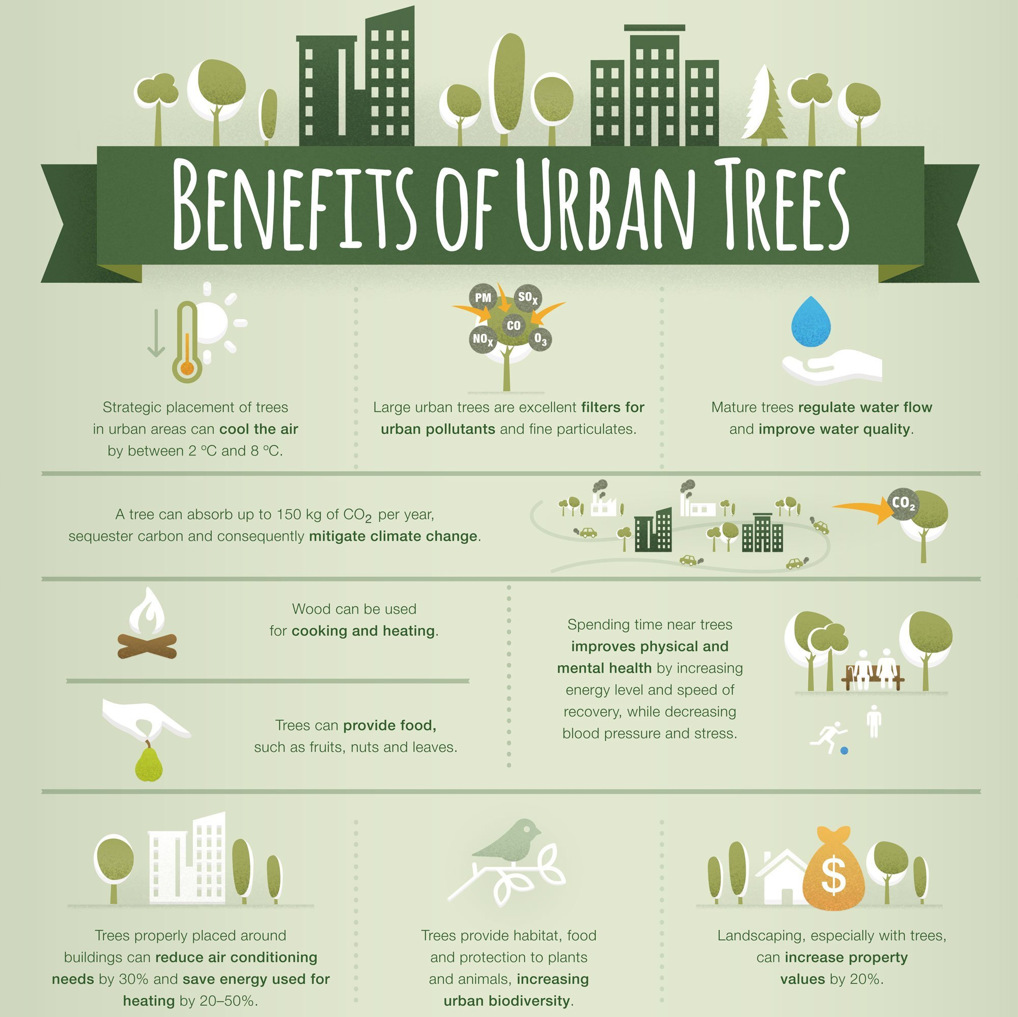 Large urban trees are excellent filters for urban pollutants and fine particulates.